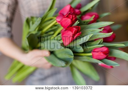 Young woman holding a beautiful bunch of red tulips in her hands. Spring present for a girl in a grey dress. Flowers bouquet
