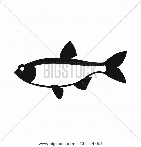 Rudd fish icon in simple style isolated vector illustration