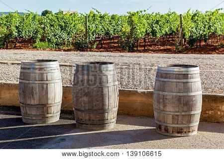 Three pipes for wine fermentation are standing on the background of vineyard, Pipes for wine fermentation