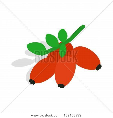Briar icon in isometric 3d style isolated on white background. Plant symbol