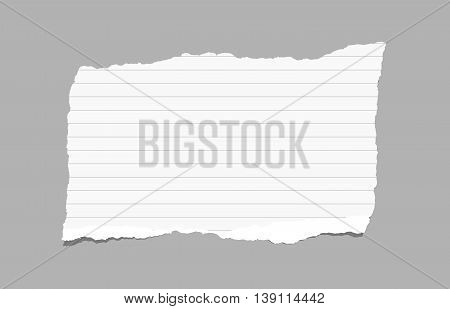 White ripped ruled note paper are stuck on gray background.