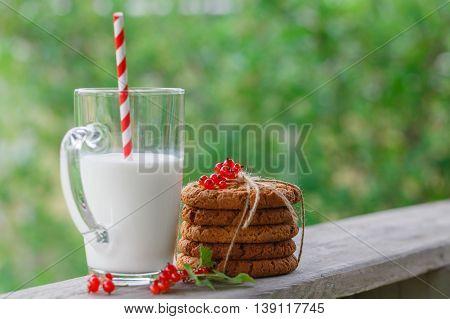 Red Currant Milk Still Life