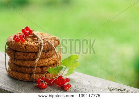 Red currant berries and oat cookies in garden