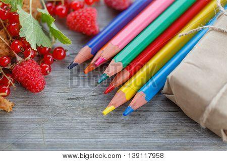 Summer Kid Education And Creative