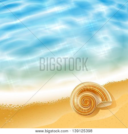 Summer beach seascape with waves and a sea shell on the shore on a sunny day; Vector background;  Eps10