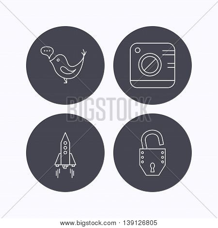 Photo, social media and rocket icons. Open lock linear sign. Flat icons in circle buttons on white background. Vector