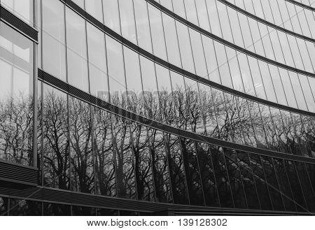elewacja budynku pokryta szkłem z odbiciem drzewa