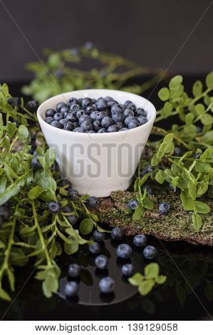 Blueberry in white bowl on bark with moss, stay in the mirror