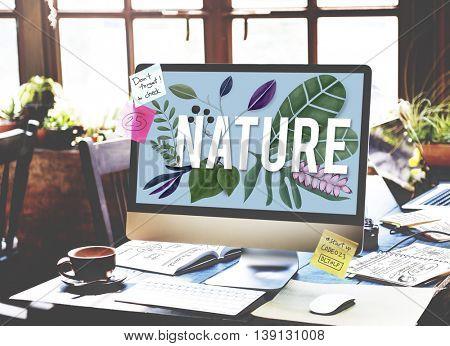 Nature Flower Botanic Plants Concept