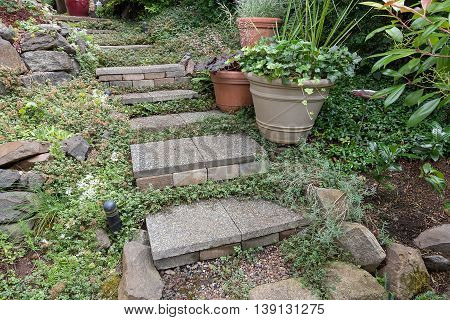 Cement stone steps with groundcover potted plants rocks bricks gravel leading to garden backyard
