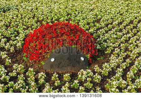 Summer park landscaping view - flowerbed with landscaping element in form of ladybird covered with bright red begonia flowers. Funny landscaping with flowers in the summer park.