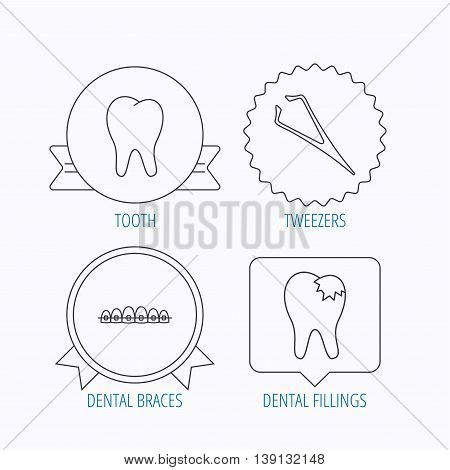 Dental braces, fillings and tooth icons. Tweezers linear sign. Award medal, star label and speech bubble designs. Vector