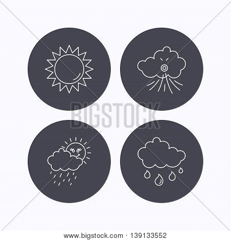 Weather, sun and wind icons. Rainy day linear sign. Flat icons in circle buttons on white background. Vector