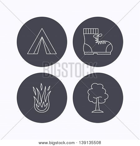 Maple tree, camping tent and hiking boots. Fire flame linear sign. Flat icons in circle buttons on white background. Vector