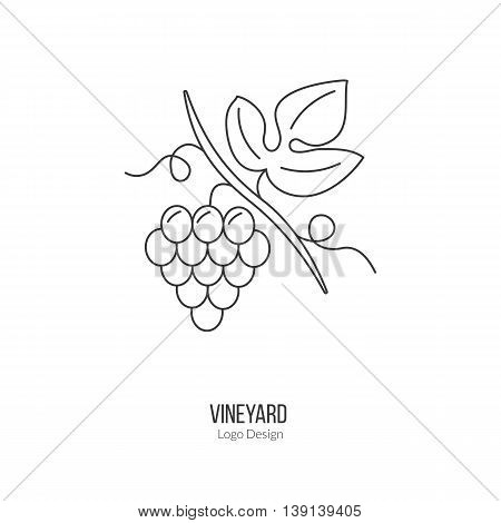 Grapes with leaf. Single logo in modern thin line style isolated on white background. Outline winery symbol. Simple mono linear pictogram. Stroke raster logotype template.