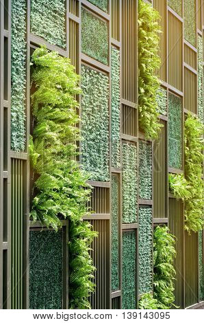 Green Wall With Warm Light Tone.