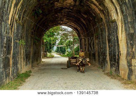 A farmer drives an ox cart through a tunnel in Vietnam