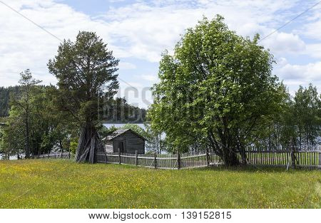 Wooden barn, timber building and wildflowers. Fence and rods.