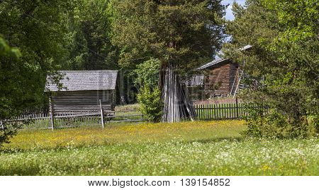 Wooden barn, timber building beyond wildflowers. Colorful environment in rural country. Farmland and plants, forest in the background.