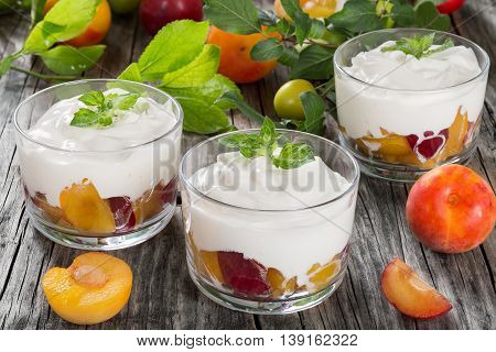 fresh greek yogurt with cherry plums decorated with mint leaves in cups branch with green and ripe plums on background close-up