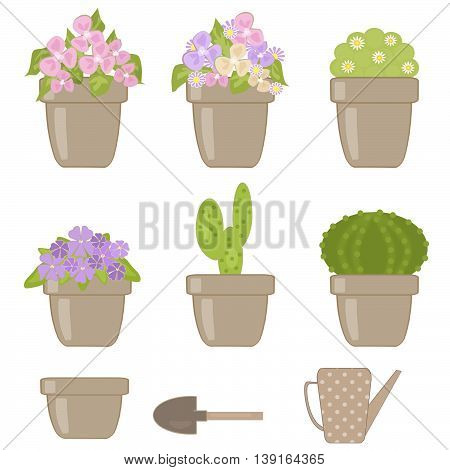 Set of various houseplants isolated green , flower