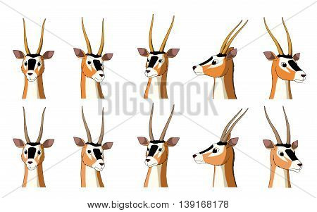 Set of African Antelope Gazelle images. Digital painting full color cartoon style illustration isolated on white background.