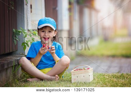 Sweet Adorable Little Child, Boy Eating Strawberries, Summertime
