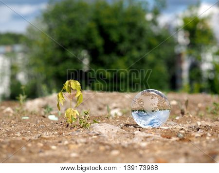 Dry germ wilted and transparent ball in a vacant lot. The bowl is reflected the blue sky. The concept of ecology drought environmental protection in the construction of houses