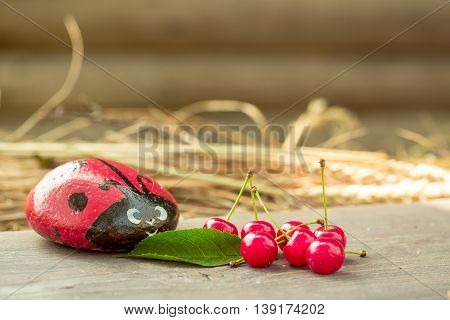 Cherry On Wooden Board With Ladybug Stone