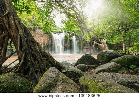 Moving mud waterfall surrounded by green tree and big stone. Sunlight shining through foliage and leaves on top.