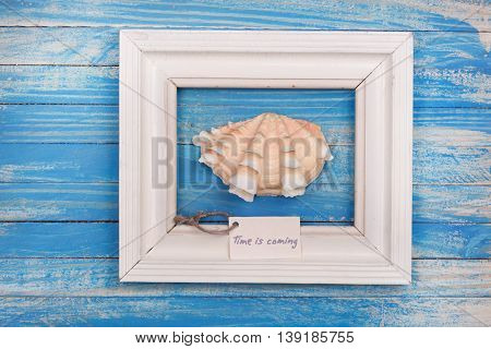 Sea Shell In The Frame With Sign - Time Is Coming