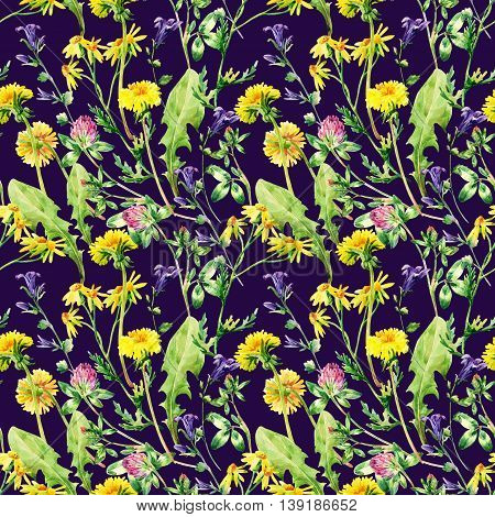 Watercolor wild field flowers. Meadow watercolor wild flowers seamless pattern. Watercolor wild bellflowers dandelion daisy weeds and herbs background. Hand painted natural illustration