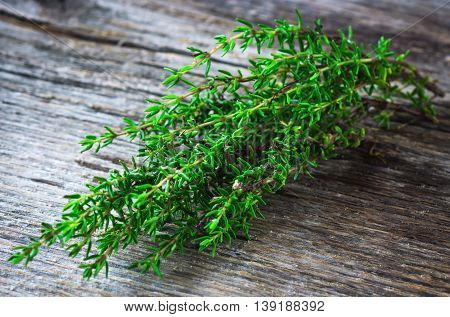 Fresh organic Thyme on old wooden background