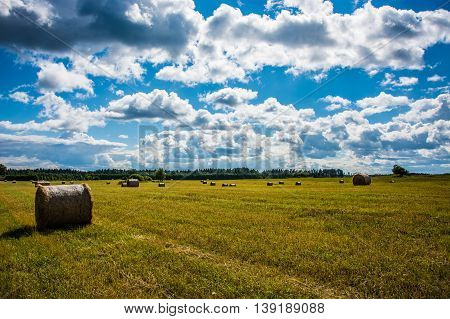 Straw bales on farmland / Harvested field with straw bales in summer