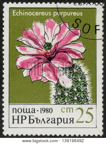BULGARIA - CIRCA 1980: A Stamp printed in Bulgaria shows a series of images