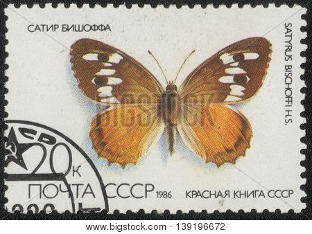 USSR - CIRCA 1986: A Stamp printed in USSR shows a series of images