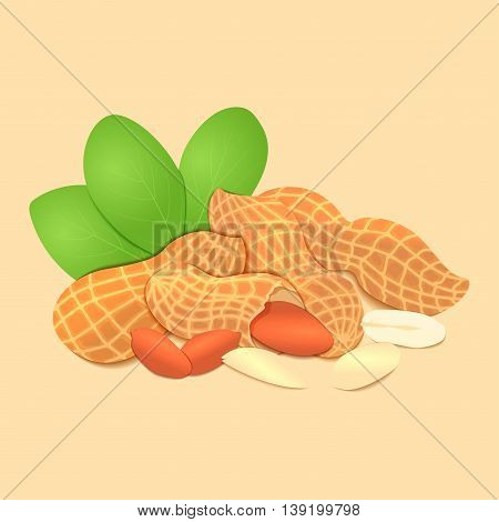 Vector illustration peanut nut. A handful of shelled peanuts nuts in shell and shelled, leaves. Tasty Image on beige background nuts for printing on packaging, advertising of healthy foods