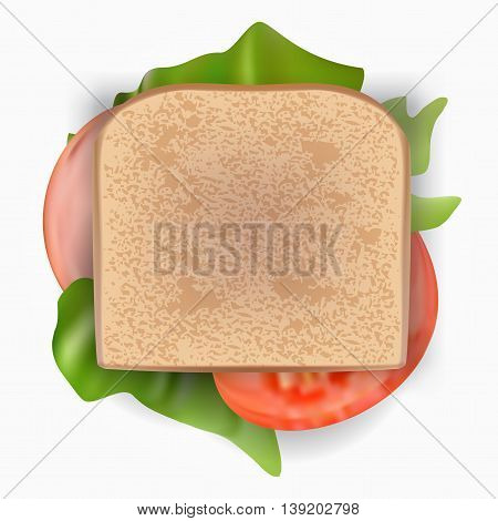 Ham and vegetable sandwich in transparent bag eps10 vector
