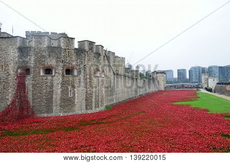 TOWER of LONDON UK Rememberance poppies at tower of london