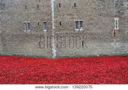 TOWER of LONDON UK 16 September 2014: Remembrance poppies at tower of london wall