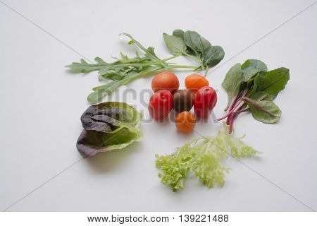 Various leafy greens and cherry tomatoes on light background