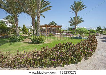 Tropical Gardens In A Luxury Hotel Resort