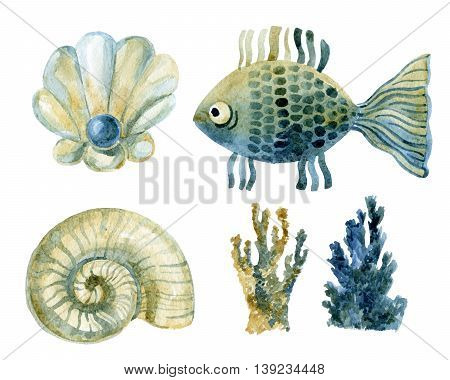 Watercolor marine set - shells coral and fish isolated on white background