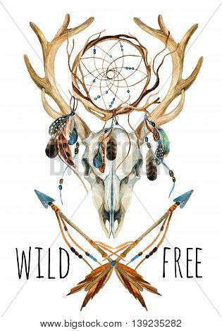 Deer skull. Animal skull with dreamcather. Deer skull and ethnic dreamcatcher with feathers isolated on white background. Wild and free design. Watercolor hand painted illustration.