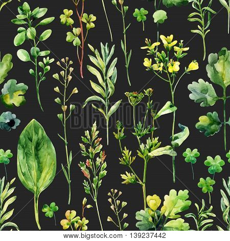 Watercolor meadow flowers weeds and herbs seamless pattern. Watercolor wild field herbs on dark background. Hand painted illustration