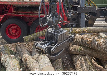 Red forestry machine and fallen trees. Industry