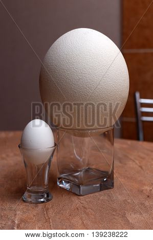 Big ostrich egg and chicken egg in glasses on table