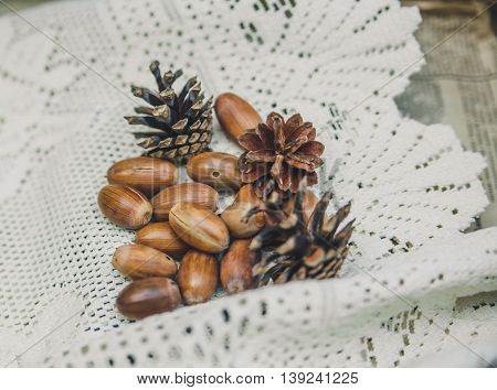 Autumnal acorns and cones on the lace white tablecloth.Vintage toned background.Selective Focus