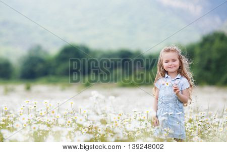 Cute little girl with brown eyes and curly long hair,dressed in light blue overalls and a blue shirt with white polka dots,posing on a blooming white daisies field in a mountainous area in the summer