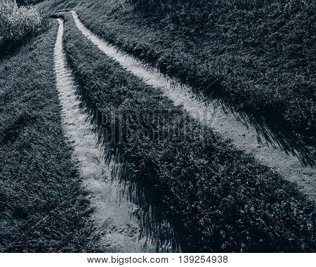 Car dirt road in the spring field